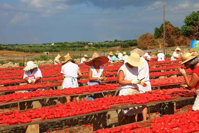 Медики указали насвязь томатов ирака желудка