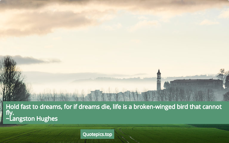 Hold fast to dreams, for if dreams die, life is a broken-winged bird that cannot fly. ~Langston Hughes