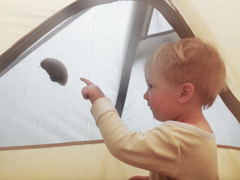 ребенок смотрит как большая улитка заползла на палатку