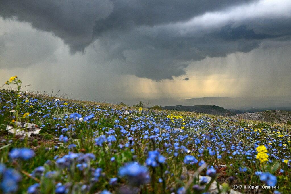 Дождь вокруг Чатыр-Дага