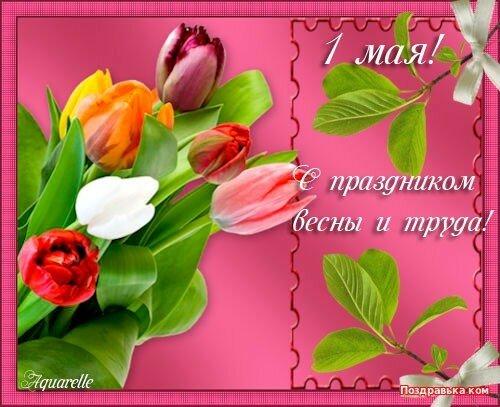 1 мая! С праздником Весны и Труда! Тюльпаны открытка поздравление картинка