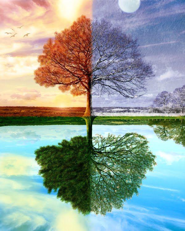 Четыре сезона года открытки фото рисунки картинки поздравления