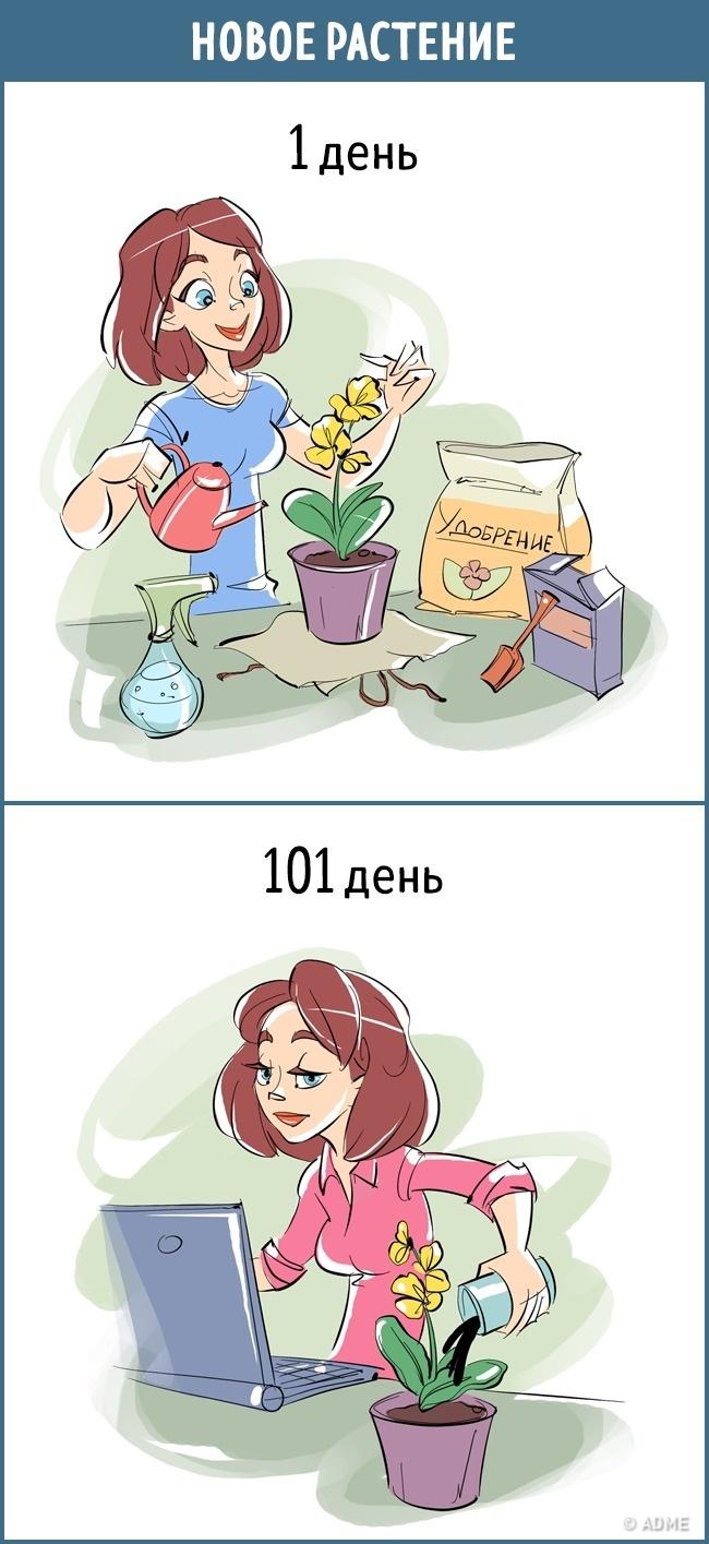 13комиксов отом, как меняется наше отношение клюбым вещам закаких-то 100 дней