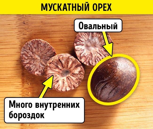 © depositphotos.com  Настоящий мускатный орех крупный, овальный, сбольшим количеством бороздо