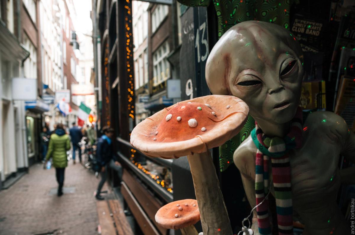 Грибы продают в смартшопах, Амстердам