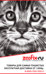 zfx-banner-260-420.png