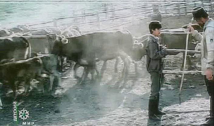 под знаком однорогой коровы фильм