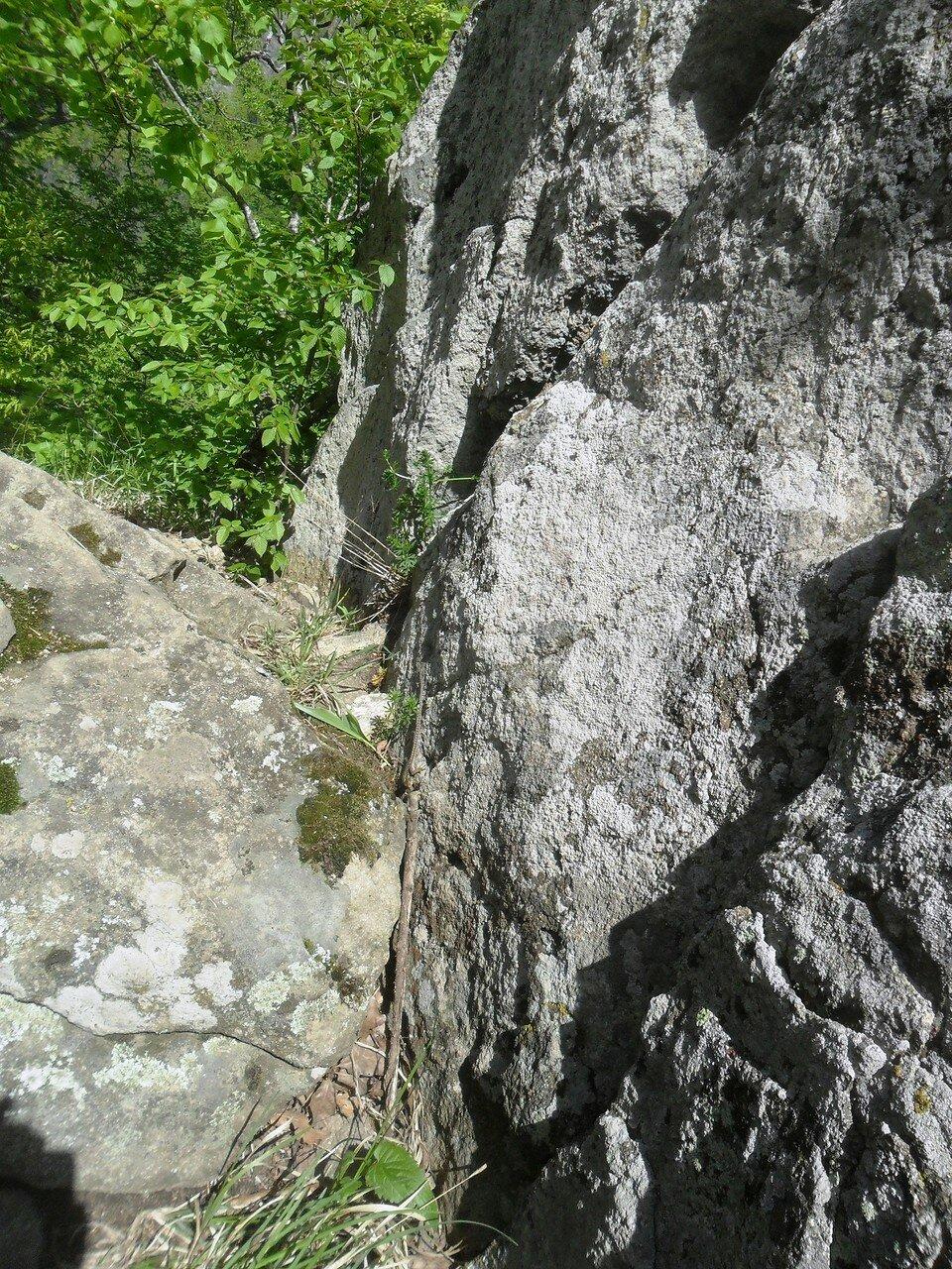 Камни - важный горный элемент ... SAM_6999.JPG