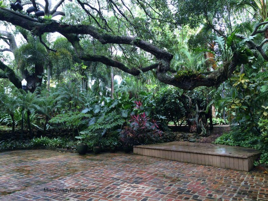 «Затонувший сад» в американском Санкт-Петербурге