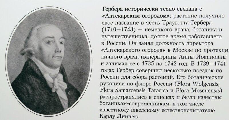 https://img-fotki.yandex.ru/get/223280/140132613.59a/0_21f28f_cdf795f0_XL.jpg