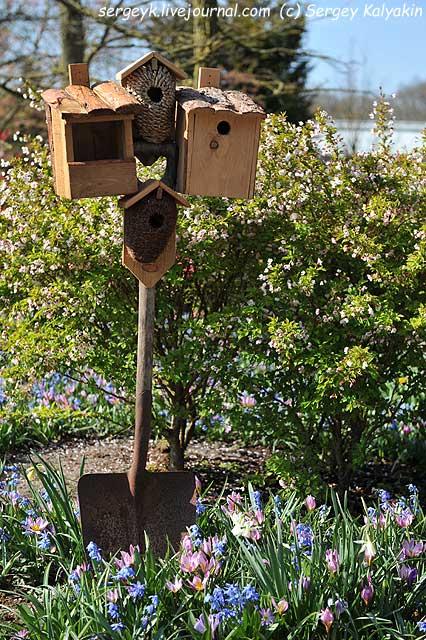 Inspirational Garden 6 (1).JPG