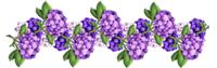 разделители_arnusha_цветочные_1.png