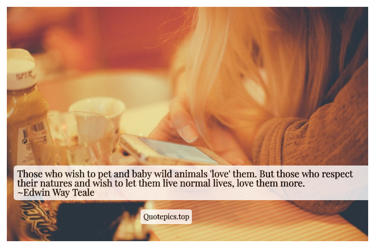 Those who wish to pet and baby wild animals 'love' them. But those who respect their natures and wish to let them live normal lives, love them more. ~Edwin Way Teale