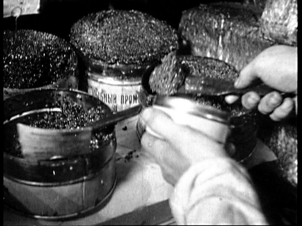 14715 Продажа икры в бывшем Елисеевском магазине 1926 Москва. 1927 год.jpg