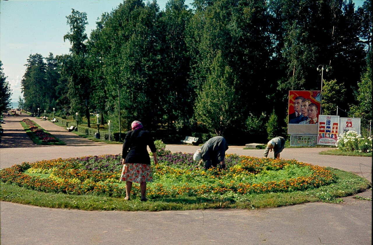 Зеленогорск. Парк