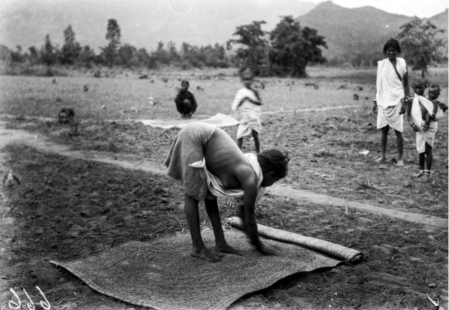 727. Орисса. Девушка раскладывает зерна на циновке.