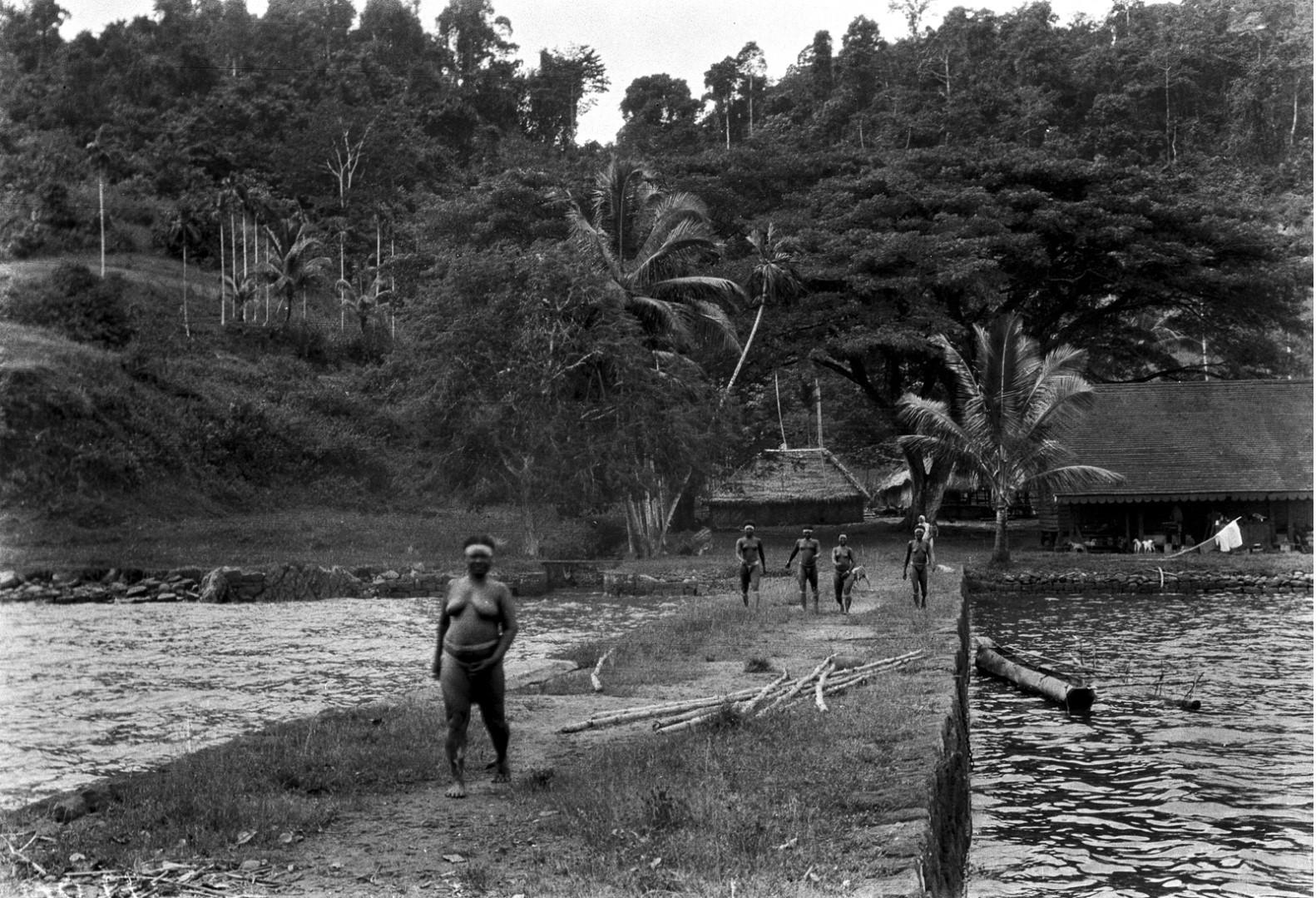 1141. Северные андаманцы в Порт-Блэр