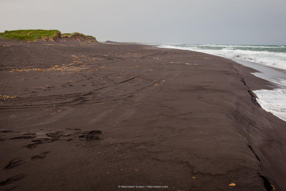 Камчатка. Черный пляж волны, здесь, океана, песок, километров, океан, фотографий, камчатских, любых, войны, берег, пляжа, место, удивительных, Камчатке, Халактырский, черный, Тихого, остался, полезностей