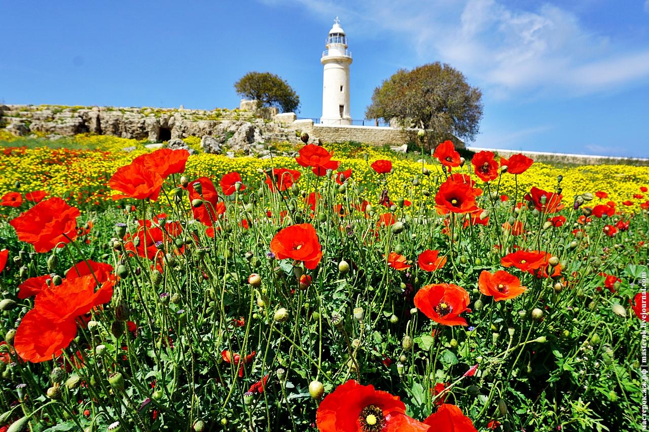 Весна на Кипре