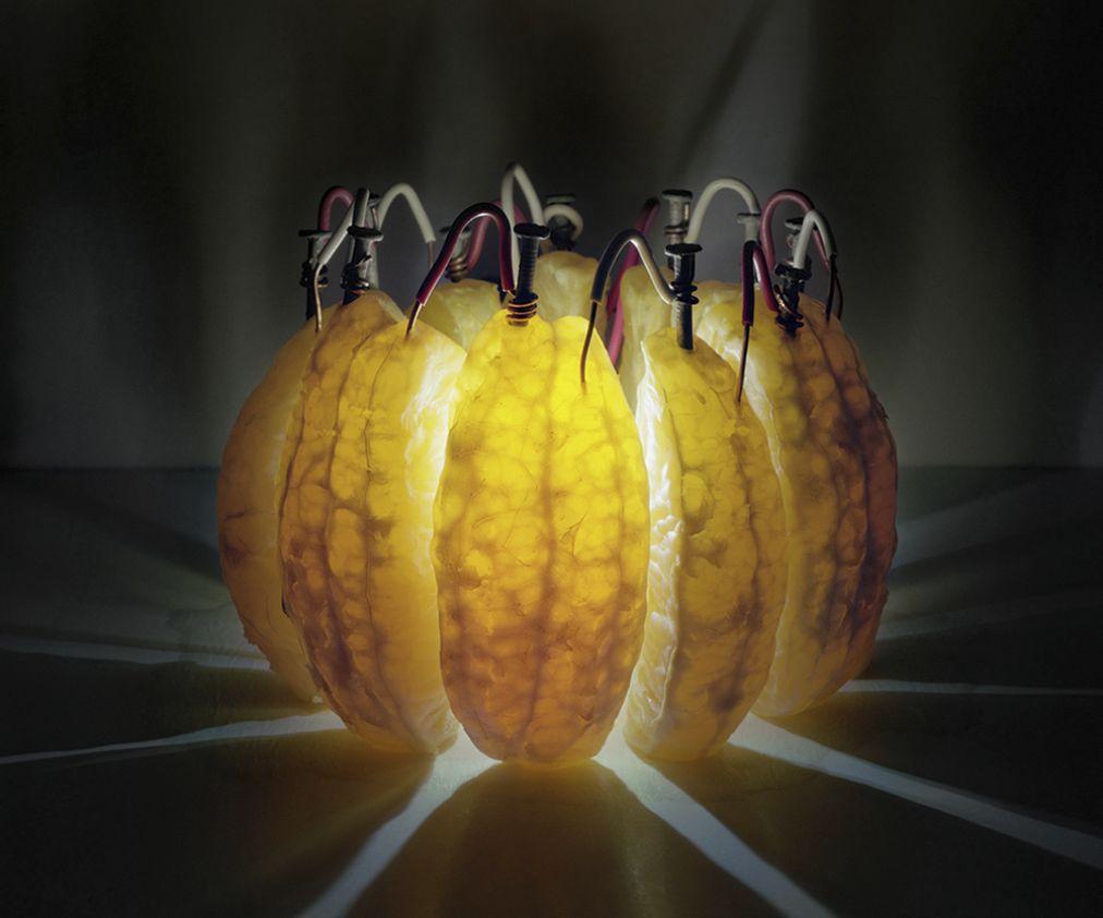 Искусство науки Калеба Харланда (11 фото)