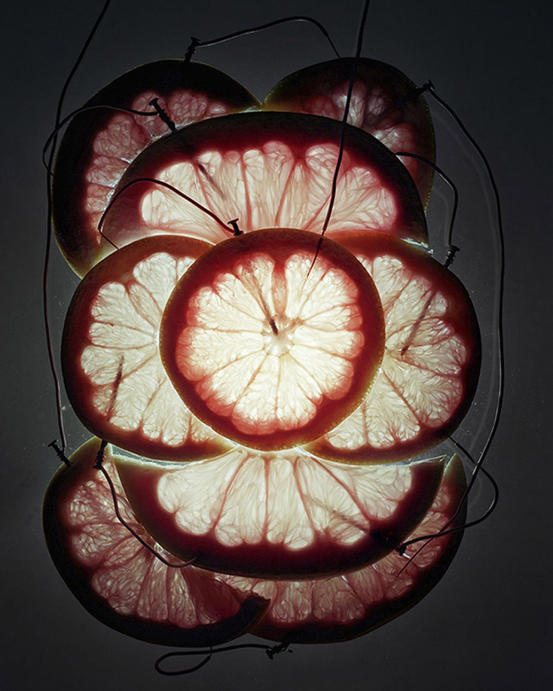 Grapefruit and Pomelo Battery, 2013
