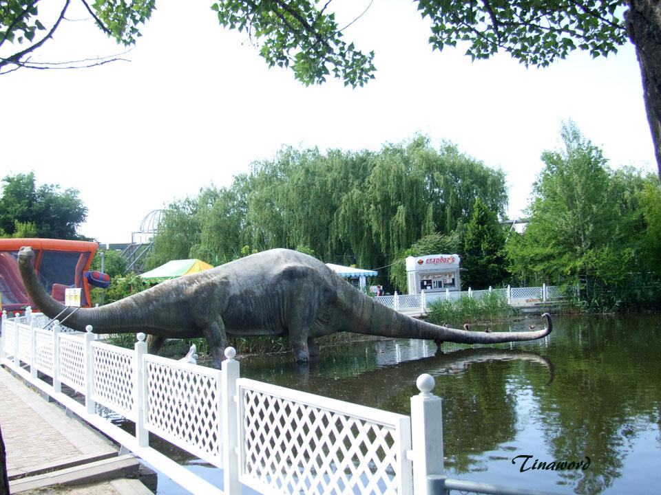 зоопарк-85.jpg