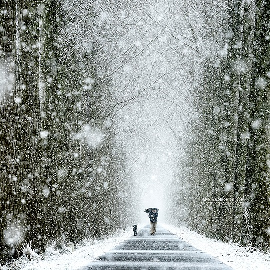 Creative Photography by Lars van de Goor (36 pics)