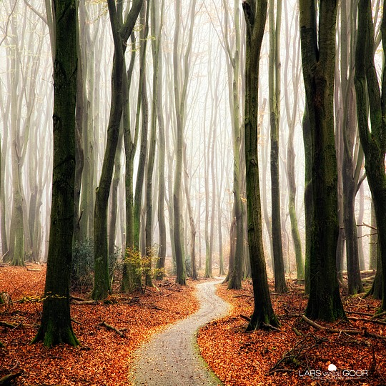 Creative Photography by Lars van de Goor