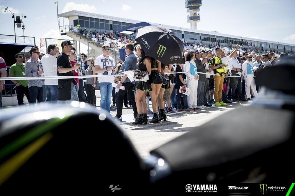 Гран При Хереса 2017: девушки паддока (фото)