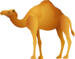 camel_PNG23420.png