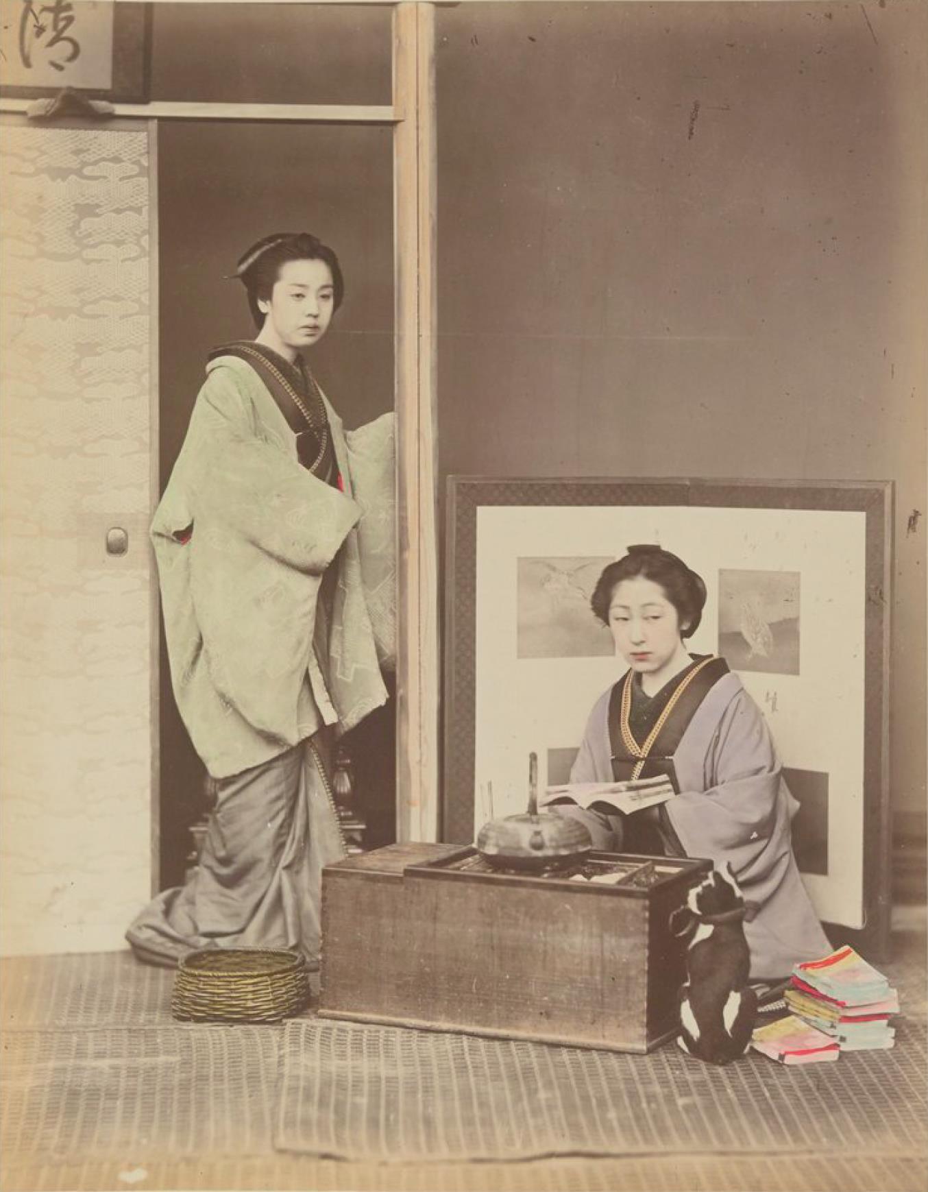 Две женщины в домашней обстановке