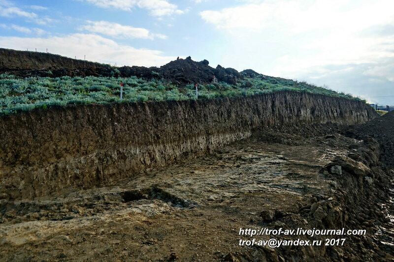 Спасательные археологические раскопки античного кургана Госпитальный