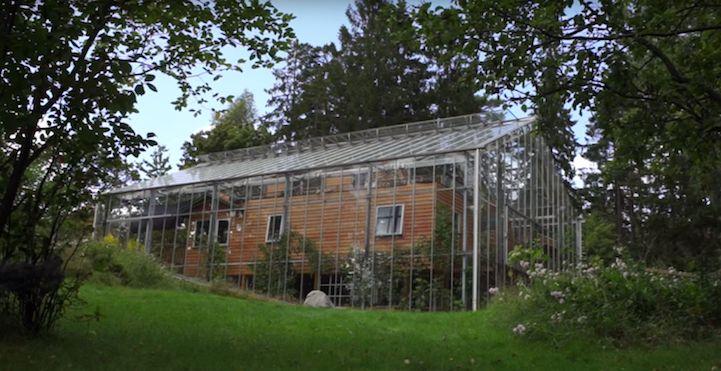 Чтобы обогреть свой дом, пара соорудила вокруг него огромную теплицу (8 фото)