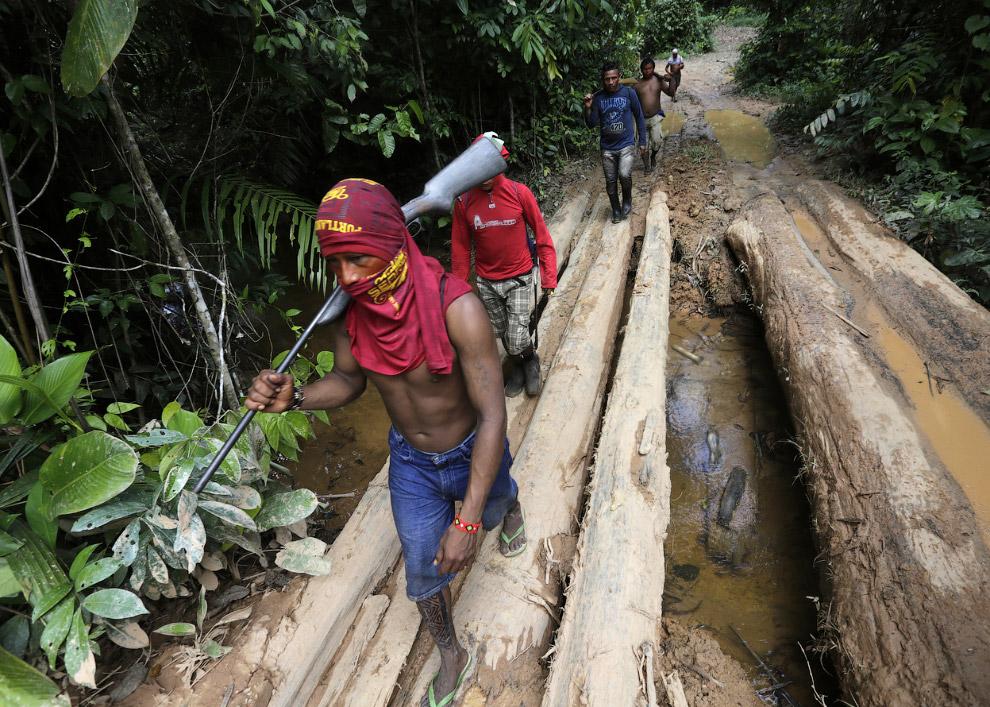 6. Встреча с местными племенами не предвещает незаконным рубщикам леса ничего хорошего. (Фото R