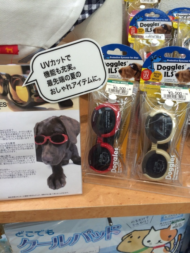 © Собака  Изобретение, которое сперва кажется странным. Новызадумывались отом, что собакам,