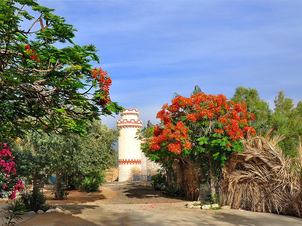 В саду монастыря Герасима Иорданского