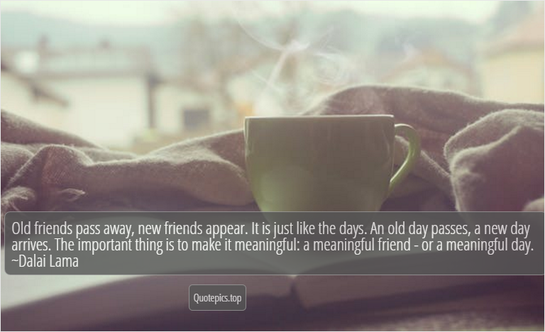 Old friends pass away, new friends appear. It is just like the days. An old day passes, a new day arrives. The important thing is to make it meaningful: a meaningful friend - or a meaningful day. ~Dalai Lama