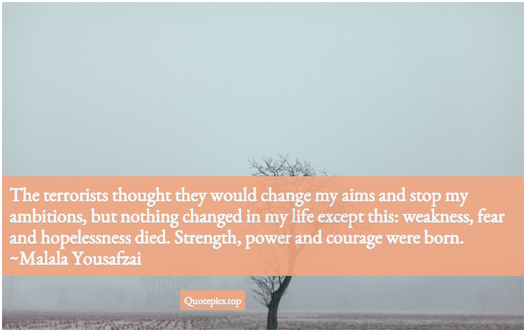 The terrorists thought they would change my aims and stop my ambitions, but nothing changed in my life except this: weakness, fear and hopelessness died. Strength, power and courage were born. ~Malala Yousafzai