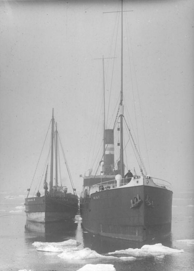 23 августа - 1 сентября 1914. Пароход «Скулэ» и лихтер «Шальк». Общий вид в Карском море