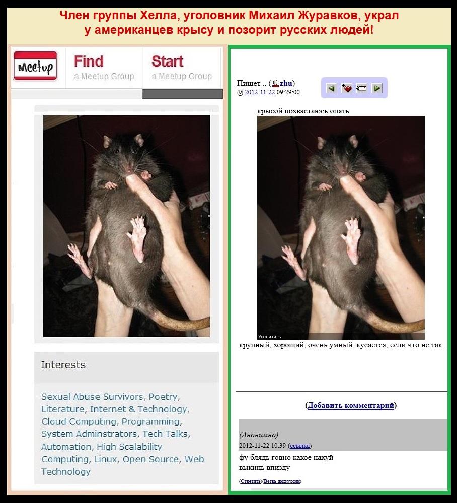 Журавков украл крысу