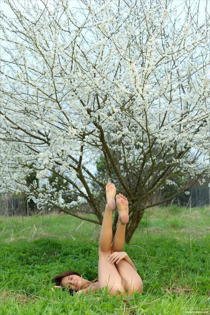 Обнаженная Nikola в цветущем саду