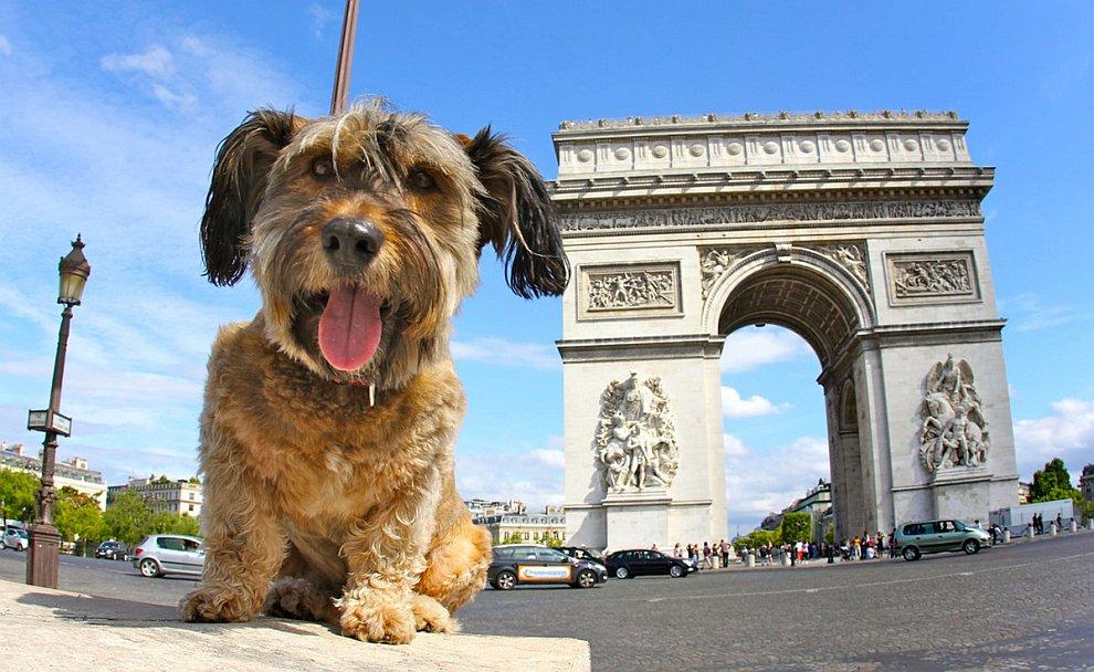 В Париже на берегу Сены:
