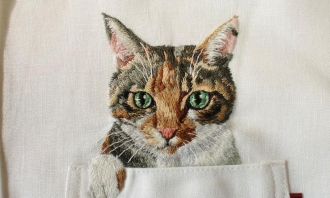 Котик из кармашка (13 фото)