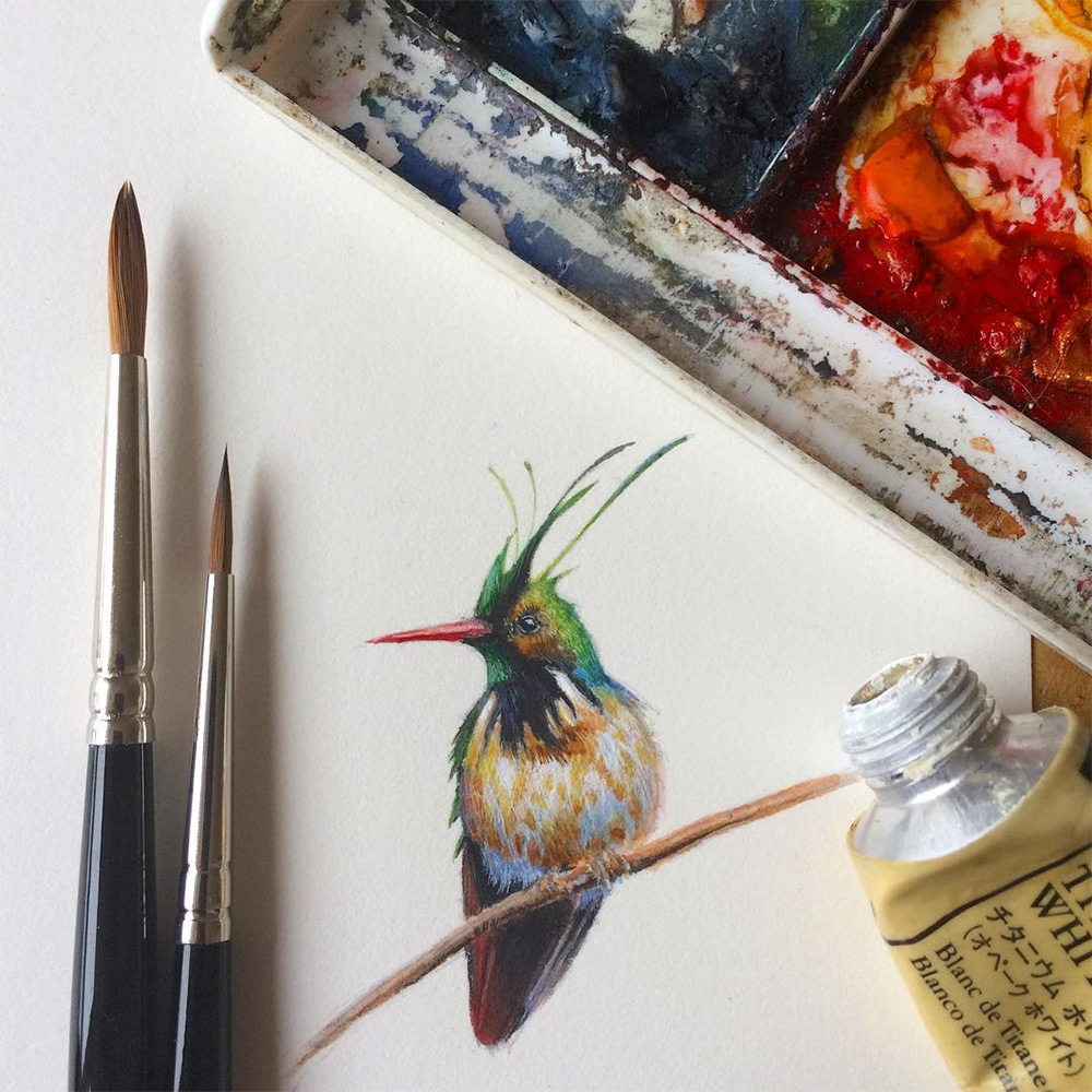 Bird by Bird: Miniature Bird Paintings by Dina Brodsky (10 pics)