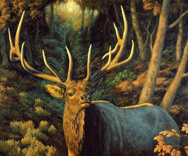 elk-painting-autumn-majesty-crista-forest.jpg