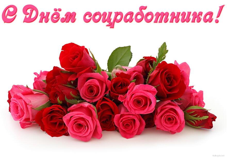 Открытка с Днём соцработника, цветы, розы