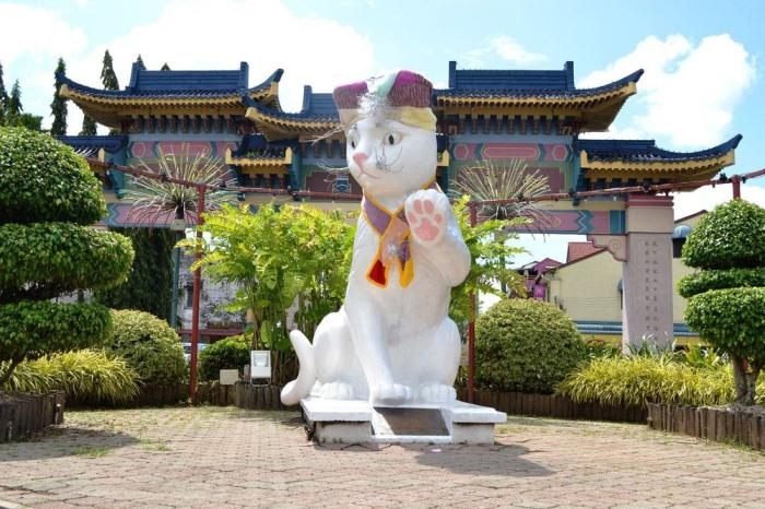 Город котов в Малайзии: за что жители поставили десятки памятников животным?