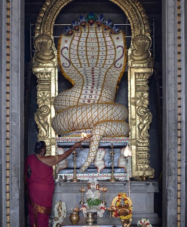 Обезьяна в храме посреди змеиных идолов.