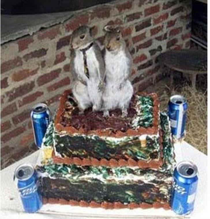 Просто два чучела животных на свадебном торте. Почему бы и нет?