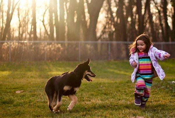 Ученые узнали, что дети исобаки помогают друг другу побороть стресс